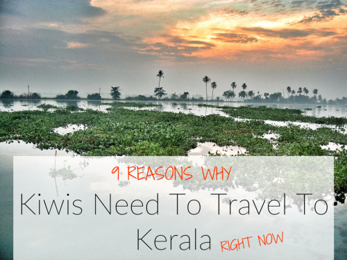 9 Reasons Why Kiwis Need To Travel To Kerala Right Now