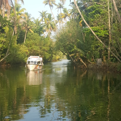 10 Reasons why I LOVE KERALA