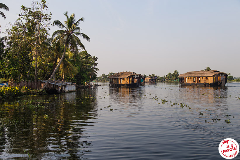 backwaters-kerala1