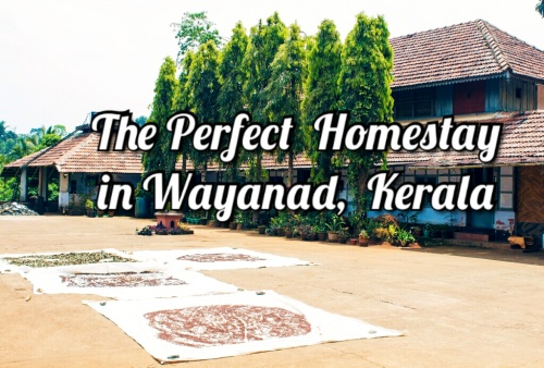 The Perfect Homestay In Wayanad, Kerala